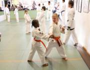 enrichment, self-regulation, physical activity, martial arts