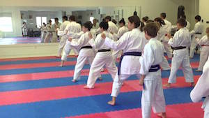 martial arts, physical education, exercise, best martial art for kids